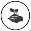 Entretien et soin des végétaux